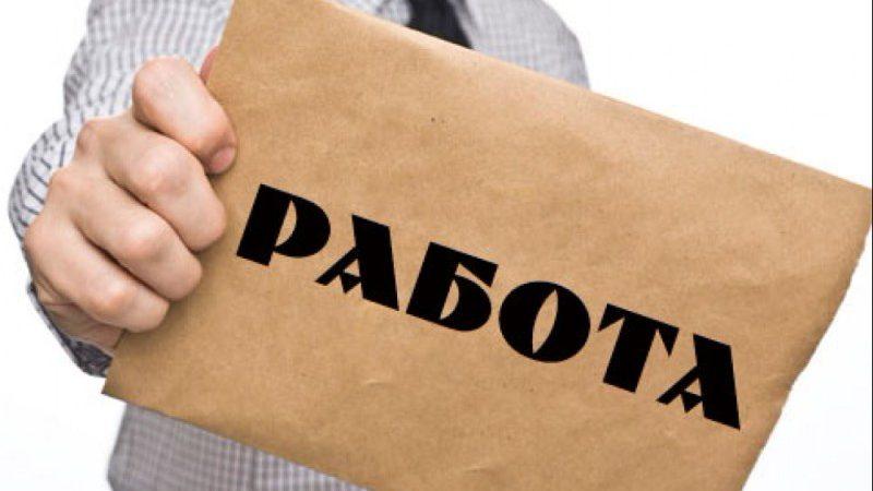 Лицензия на трудоустройство за границей. Интервью с юристом